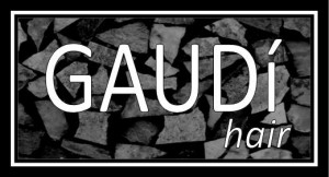 IMAGE - Gaudi Hair